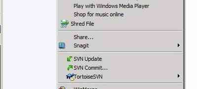 remove/delete svn folders